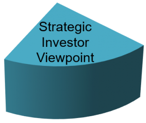 Strategic Investor Viewpoint